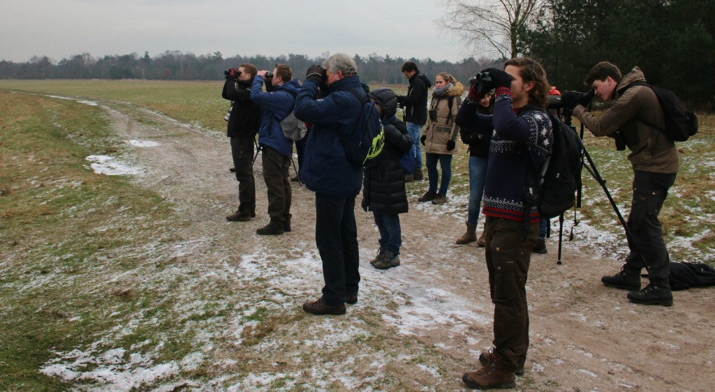 Een vogelkijk excursie op de Arnhemse heiderug